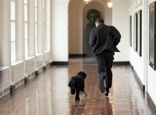 Bo and Barack in the White House